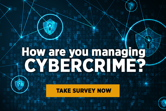 How are you managing cybercrime?