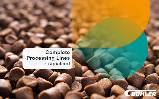 The right processing expertise to work with your ideal formulations.