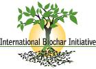 biochar international