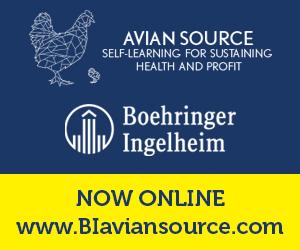 BI Avian Source