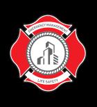 NLSG logo