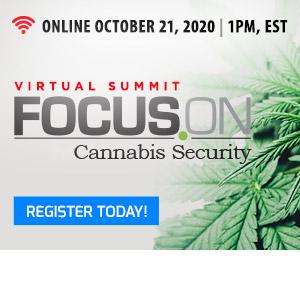 Focus On Cannabis
