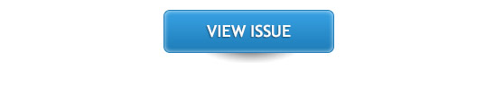 View issue
