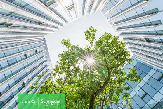 Smart Working: Smart Buildings and the Future of Work