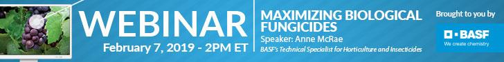 BASF Webinar