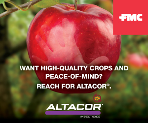 FMC Altacor