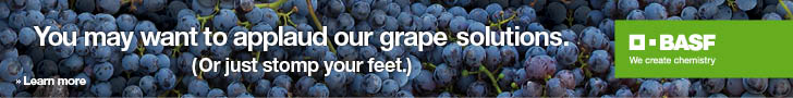 BASF-Grape