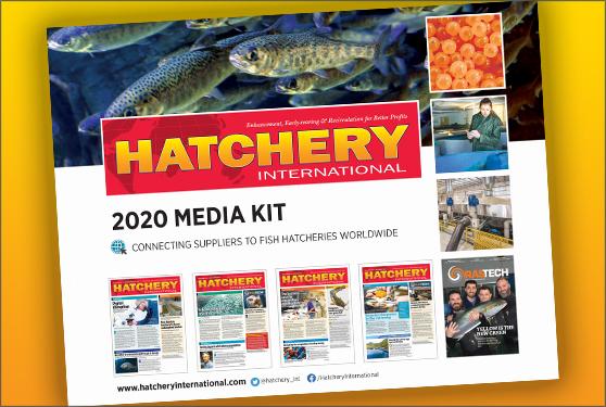 <center>Get your 2020 media kit now</center>