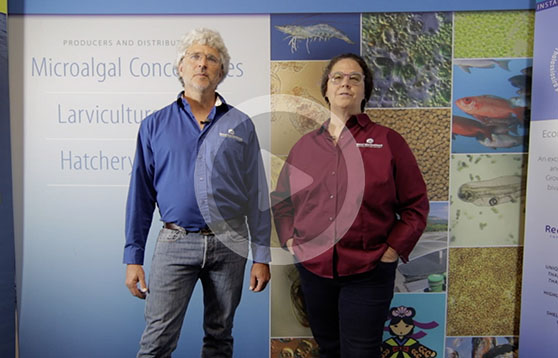 Click to meet the Reed family and learn how they meet the algal needs of hatcheries around the world.
