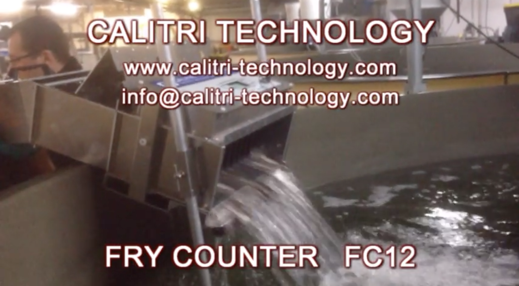 Fry Counter FC12 type, to count fry from 0,1gr to 20gr, accuracy 98%