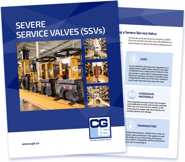 CGIS SSVs