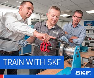 SKF - BB1