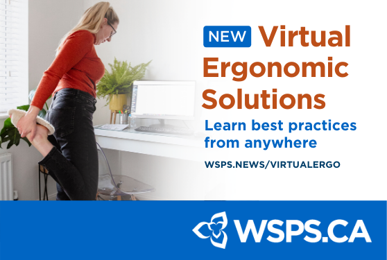 Virtual Ergonomic Solutions, Workplace Ergonomics done anywhere