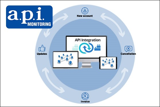 <b>Automate and Integrate Your Data Processes with a.p.i. Monitoring</b>