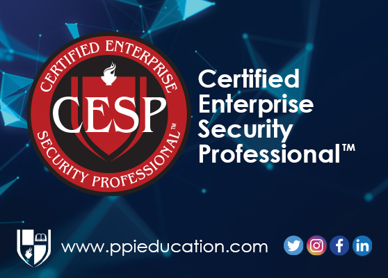 The Gold Standard in Executive Level Security Training