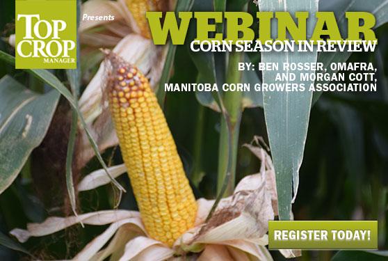 Reviewing this year's corn season