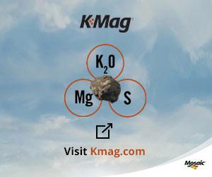 Mosaic K Mag