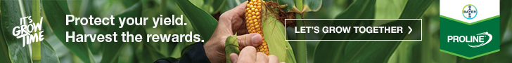 Bayer Proline Corn