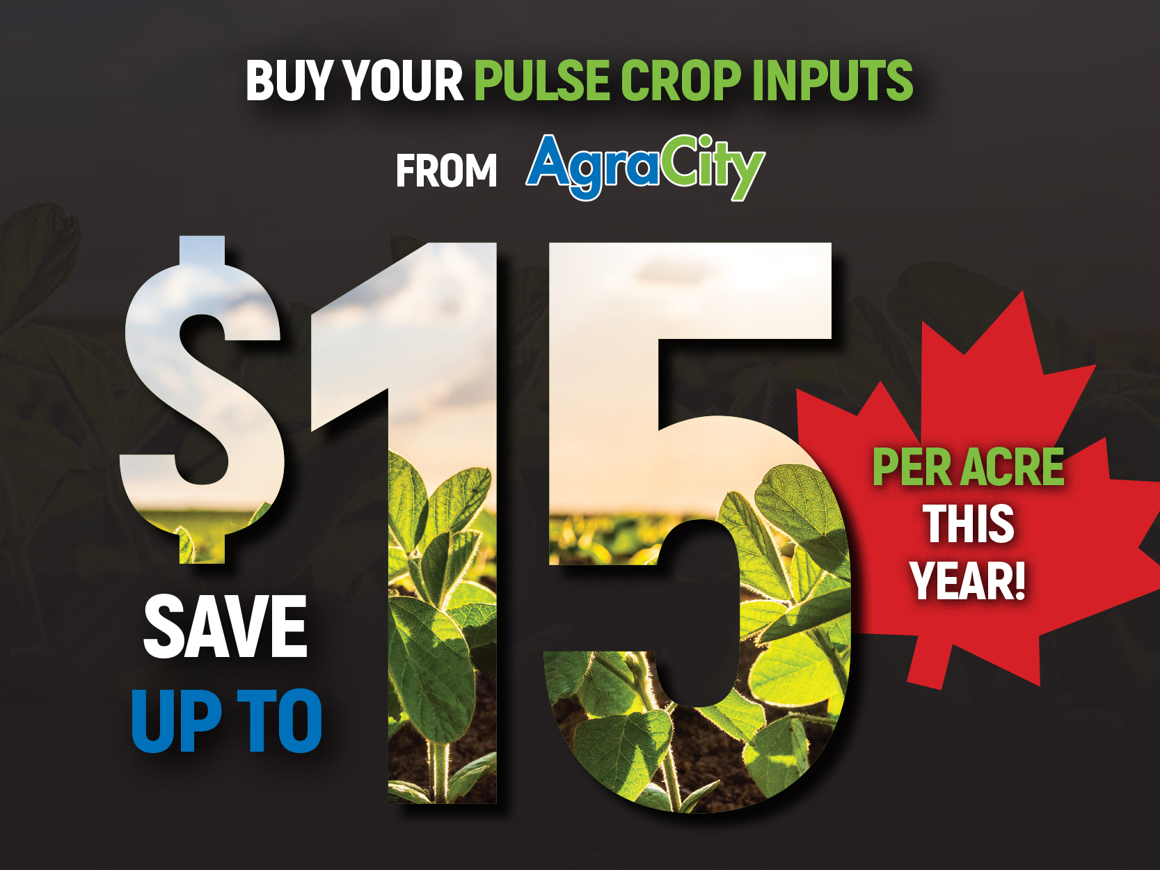 Buy Your Pulse Crop Inputs from AgriCity