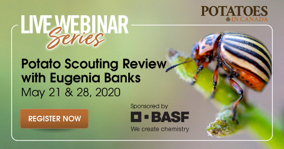 <center>Live Webinar Series - May 21 & 28, 2020 <br> Potato Scouting Review with Eugenia Banks</center>