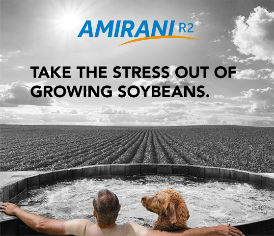 Take the stress out of growing beans.