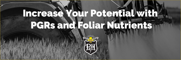 Increase Your Potential with PGRs and Foliar Nutrients
